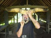 Bull-boar-man!, Lombaha, Ambae.: by thomasz, Views[78]