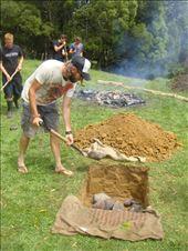 Making a hangi (ground oven), Avonstour: by thomasz, Views[8]