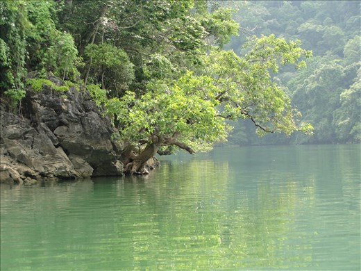 The value of biodiversity and tourism of Ba Be National Park, Vietnam