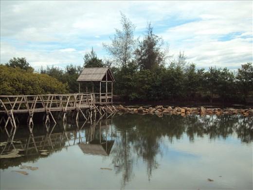 Tam Giang Cau Hai Lagoon, Vietnam