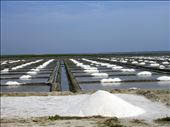 Salt Planes: by tiff_haggith, Views[105]
