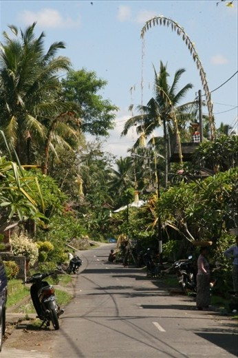 A typical penjor lined street in a residential neighbourhood of Ubud