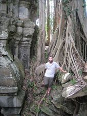 Trees taking over at Ta Prohm temple: by tk-tempany, Views[367]
