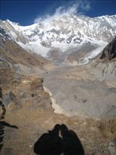 Admiring Annapurna, the 10th highest mountain in the world standing at 8091 metres. : by tk-tempany, Views[523]