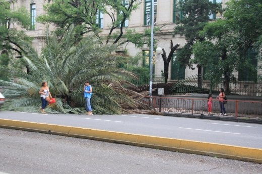 Storm aftermath in Cordoba