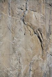 Crazy people climbing the El Capitan face: by tk_inks, Views[317]