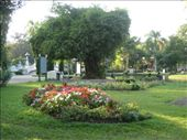 Park in Chiang Mai: by tnj4884, Views[182]