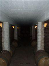 An old wine cellar: by tom_lynar, Views[232]