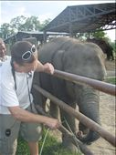 Tommy up close with the elephants and eleppant refuge camp: by tommygirl, Views[325]