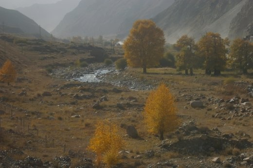 Autumn in Kashgar is a beautiful but brief respite from the unbearable conditions of every other season.