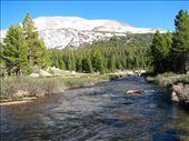 Clear mountain stream, Yosemite: by tpara, Views[505]