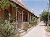 Beautiful Victorian terraces in Tucson: by tpara, Views[230]