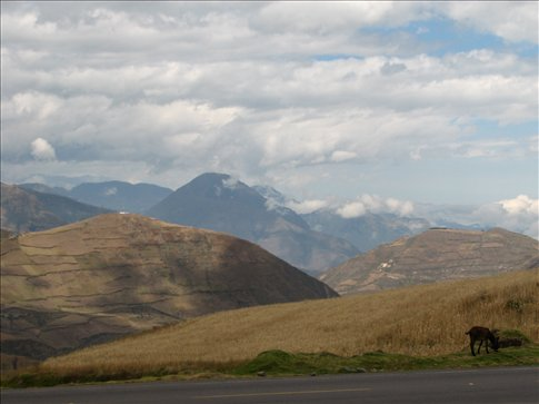 A few of the many volcanoes along the Pan Americana, unfortunately mostly obscured by cloud