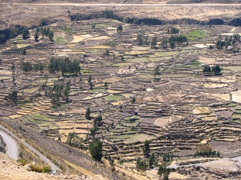 Patchwork fields in the Colca Valley
