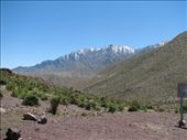 Snowclad Andes in the background: by tpara, Views[158]
