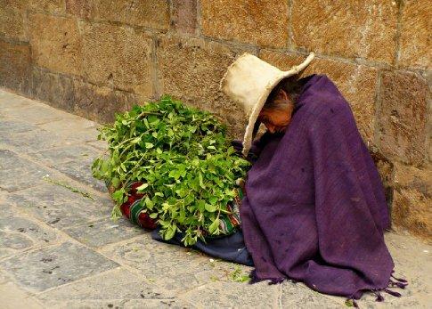 Just a quick nap! Photo courtesty of Stuart Starrs, author of ...en Peru! blog