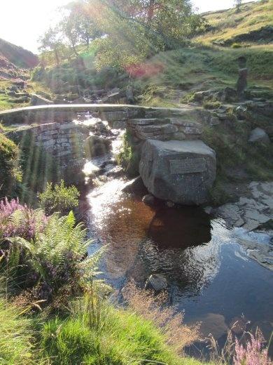 Trickling Bronte Falls