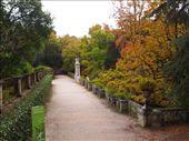 Jardim Botanical: by traveling_texan, Views[97]