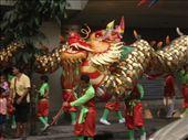 parade pour le nouvel an chinois dans les rues: by travelling_chouchi, Views[351]