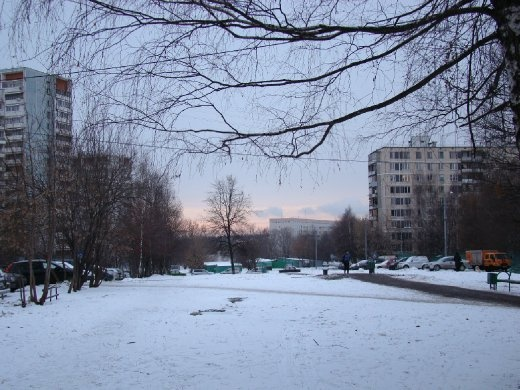 The snow covered park on my way to work