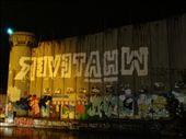 Israel Palestine wall with its graffiti: by treefrog, Views[151]