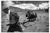by trekking, Views[67]