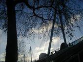 by trhippy, Views[75]