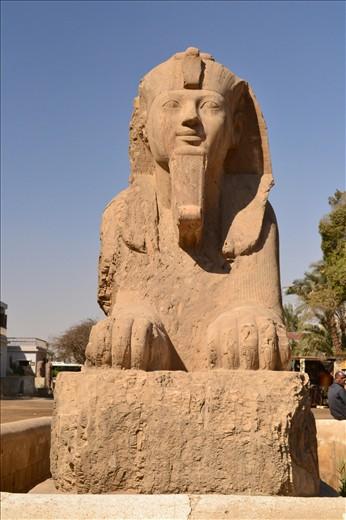 sphinx at Sakkara, Egypt