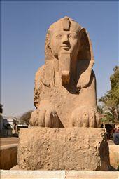 sphinx at Sakkara, Egypt: by tsabit, Views[387]