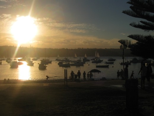 manly warf at sunset for a picnic