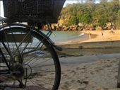 Shelly beach and its basket bearing bicycles is very quaint.: by ttmcote35, Views[92]