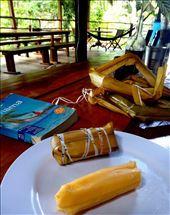 Maissijauhoista keitetty lehteen kääritty panamalaisherkku bollo.: by tuulikki, Views[67]