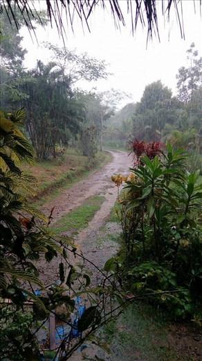 Tyypillinen iltapäivänäkymä sadekautena.