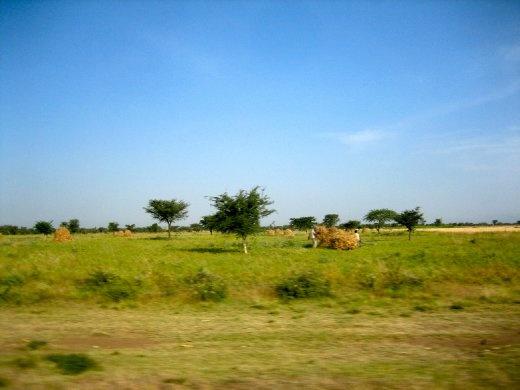Countryside on the way to Awasa