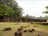 Elephant Terrace : by tweber, Views[163]