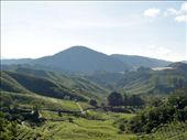 Tea plantations : by tweber, Views[97]
