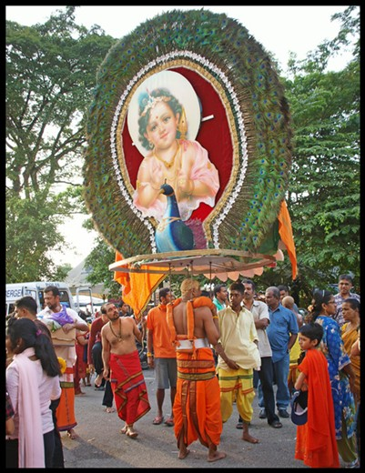 Carrying a 'kavadi' -  a large display worn over the head during the festival.