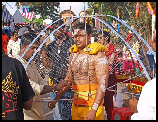 A man wears a harness with skewers in his body during the festival.