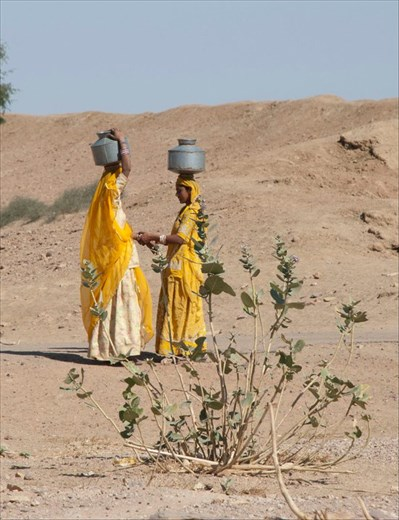 Stopping to chitchat in Rajasthan
