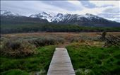 A bridge into nature.: by ushuaiapics, Views[143]