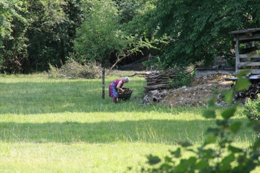Old lady gathering firewood, St. Martin de Vers