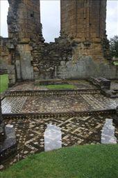 Mosiacs at Byland Abbey, Yorkshire: by vagabonds, Views[130]