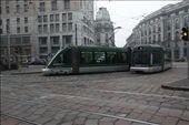 Streetcar tango, Milan: by vagabonds, Views[447]