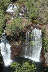 Florence Falls, Litchfield National Park, a favorite swimming hole: by vagabonds, Views[301]