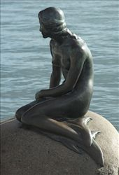 Little Mermaid, Copenhagen: by vagabonds, Views[1804]