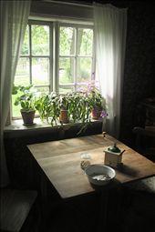 Farm worker's house, Skansen: by vagabonds, Views[138]