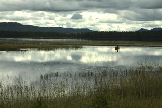 Lake Woebegone? Sweden