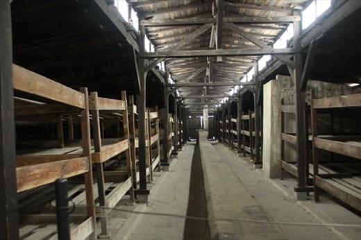 Bunks in Birkenau barracks