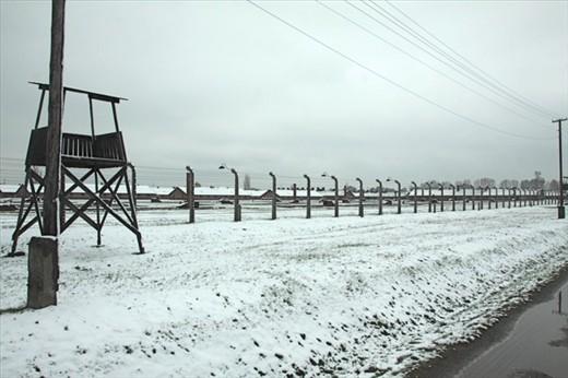 Birkenau vista, 425 acres, 100,000 prisoners