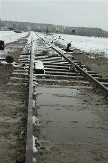 Railroad to hell, Birkenau